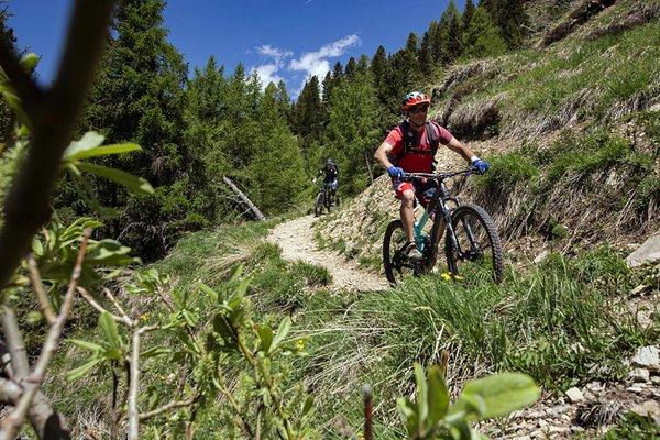 rosadira-bike-dolomiti-201923.JPG