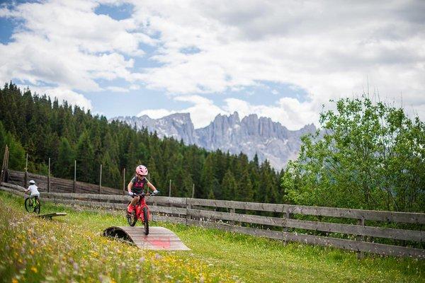 rosadira-bike-17-dolomiti40.JPG