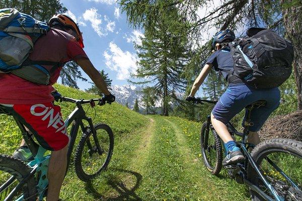 rosadira-bike-dolomiti-201941.JPG