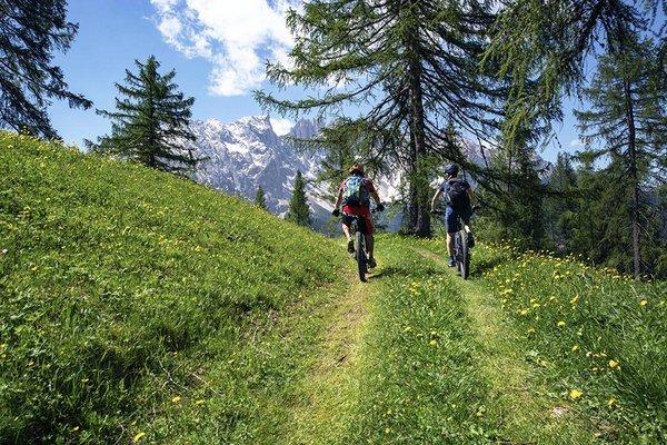 rosadira-bike-dolomiti-201921.JPG